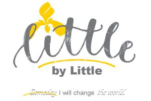 Little by Little Foundation
